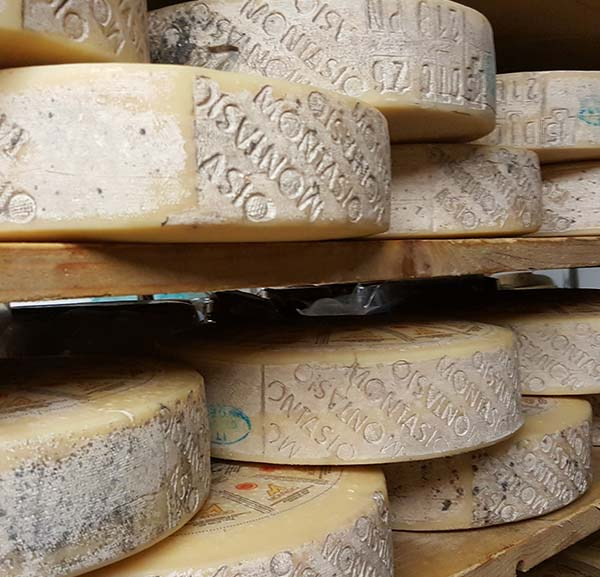Artisanal Cheese Visit and Tasting