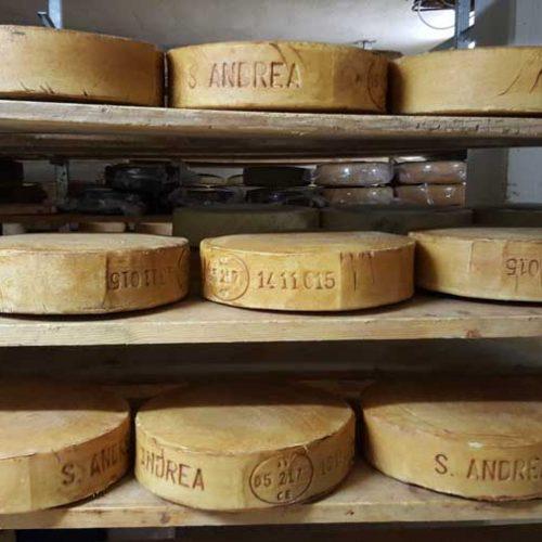 Artisanal Cheese