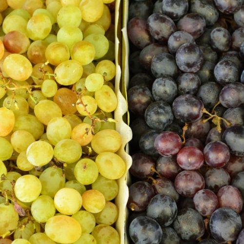 Wine Geek Week: The best of the Veneto and Friuli 7 days/6 nights