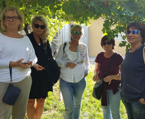 Amarone & Soave Experience