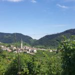 Vineyards and Castles